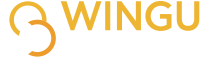 Wingu Networks | Blog